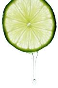 绿色柠檬片2