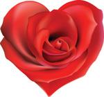 心形玫瑰矢量