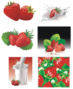 动感牛奶与草莓