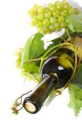 葡萄叶和酒瓶
