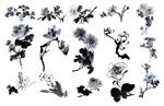 国画水墨花卉2