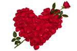 玫瑰花瓣心形