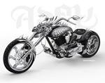 酷龙头摩托车矢量