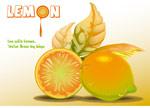柠檬矢量绘图