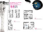 香洲半岛画册