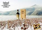 张裕葡萄酒广告