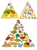 食物金字塔矢量