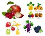 水果集矢量素材