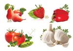蔬果矢量素材