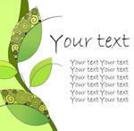 绿色植物插图