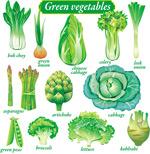 精致绿色蔬菜