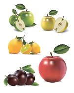 超写实水果