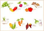 可爱蔬果矢量