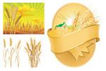 小麦主题矢量