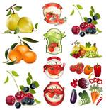 水果蔬菜矢量
