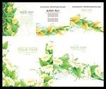 绿色清新卡片