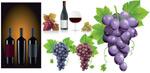 葡萄和酒矢量