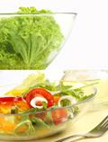 绿蔬菜高清图片