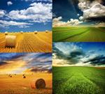 草原高清图片