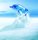 跳跃水晶海豚