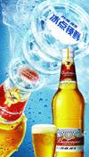 纯生啤酒海报