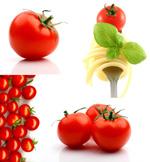 番茄高清图片
