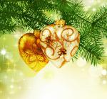 圣诞节设计元素5