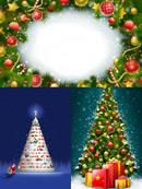 精美圣诞树