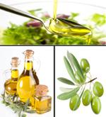 橄榄油素材2