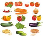 瓜果蔬菜矢量