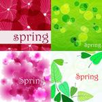 spring春天概念