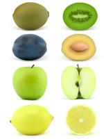 写实水果矢量