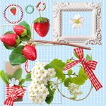 草莓和相框