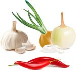 常用配料蔬菜