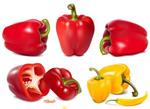 辣椒青椒蔬菜