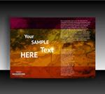 2020国自产拍精品网站