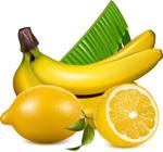 香蕉柠檬矢量