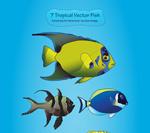 热带海洋鱼类