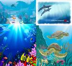 蔚蓝海底世界