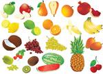 各式水果矢量