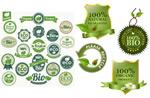 绿叶装饰图标