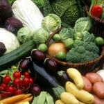 蔬菜静物4