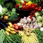 蔬菜静物5