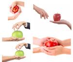 苹果与人的手