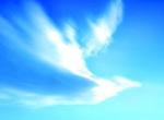 创意鸟型白云