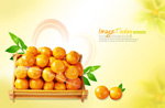 新鲜芦柑橘子