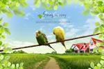 春季鹦鹉风景