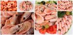 虾肉图片素材