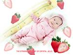 草莓宝宝个性写真