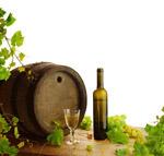 橡木桶与酒瓶